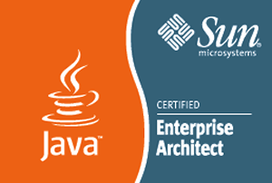 Sun Certified Enterprise Architect