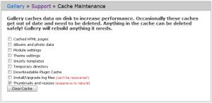 cache-maintenance