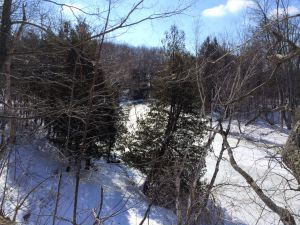 One of the scenic overlooks at Sylvan Solace with a winter view of the river
