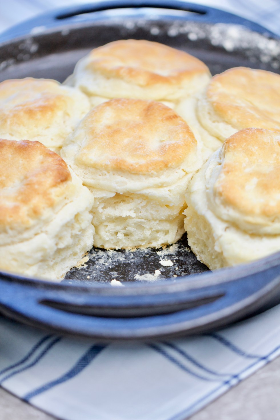 Easy Buttermilk Biscuits - chipsandpepper.com