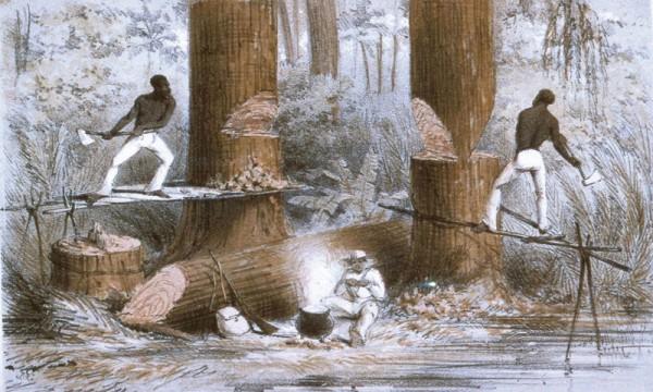 Daniel Finamore Furnishing The Craftsman Slaves And
