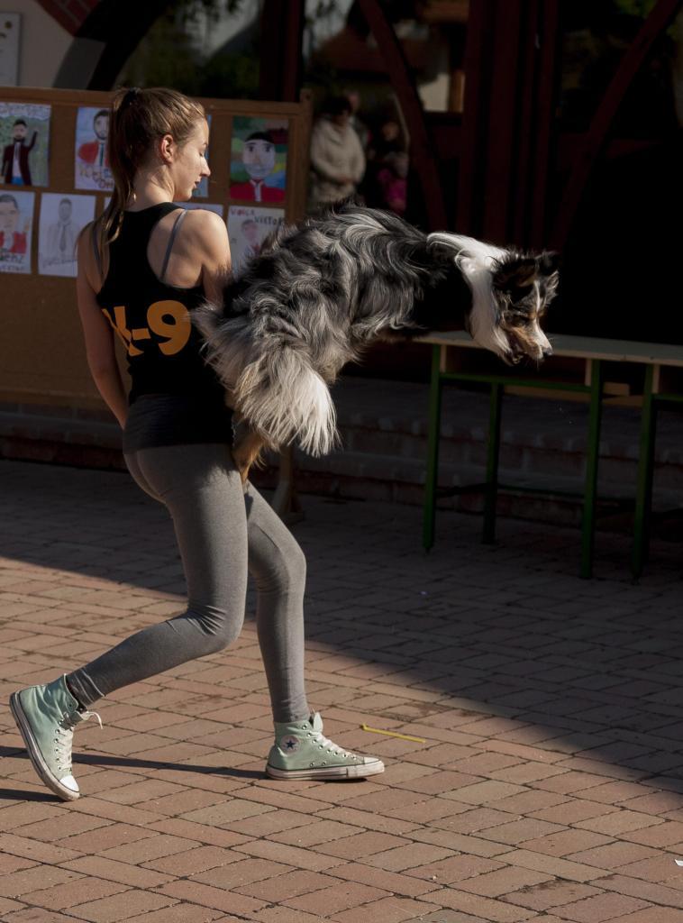 Dogdancing verlangt absolute Höchstleistungen von Hund und Halter