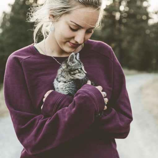 Hypothermie - Unterkühlung bei Katzen. Was zu tun ist...