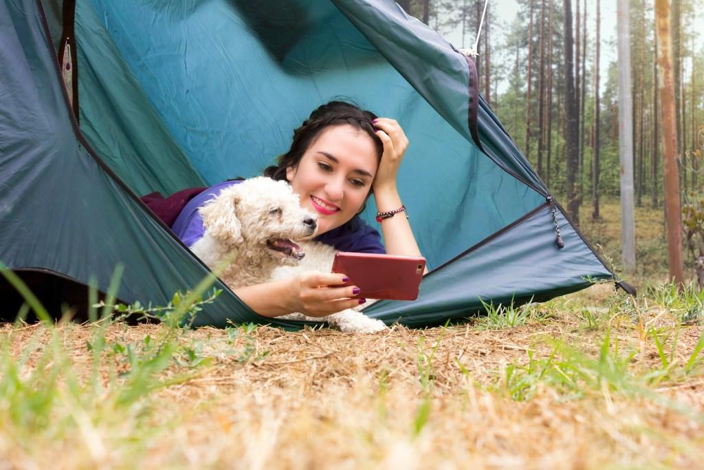 Manche Campingplätze sind so hundefreundlich, dass sie sogar Hundetoiletten und Freilaufflächen bieten