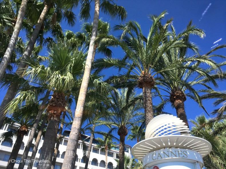Cannes palmeras