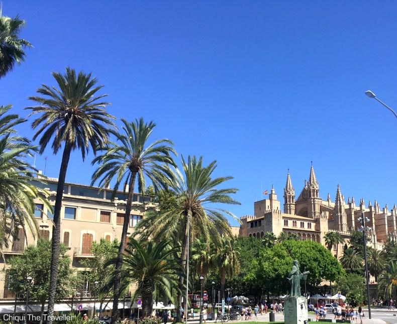 Catedral Mallorca palmeras