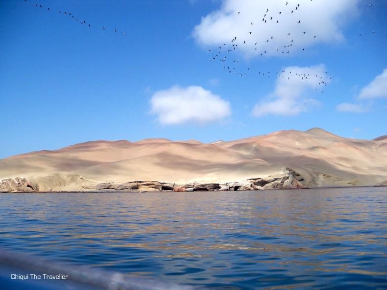 Paracas Islas Ballestas Peru