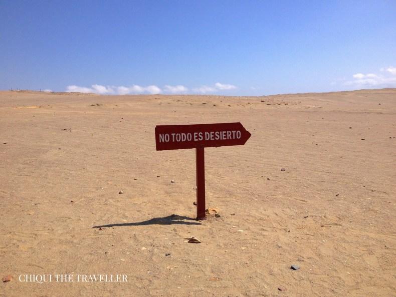 No todo es desierto Paracas