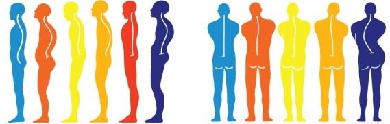 posture-dos-chiropracteur