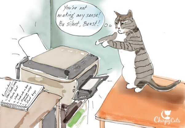 Cat and the printer