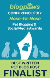 Best written blog post finalist