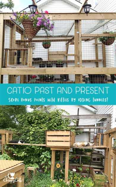catio with tunnels