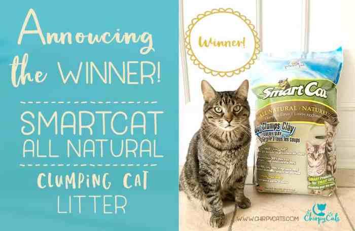 winner smartcat litter giveaway