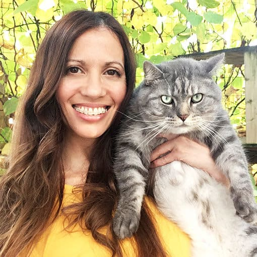 Mr. Jack, the grey tabby cat with his human, the Lady Cat