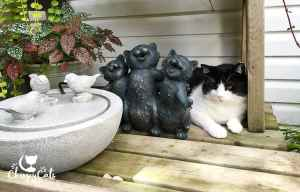 Cat sitting next to fountain and singing cat statue