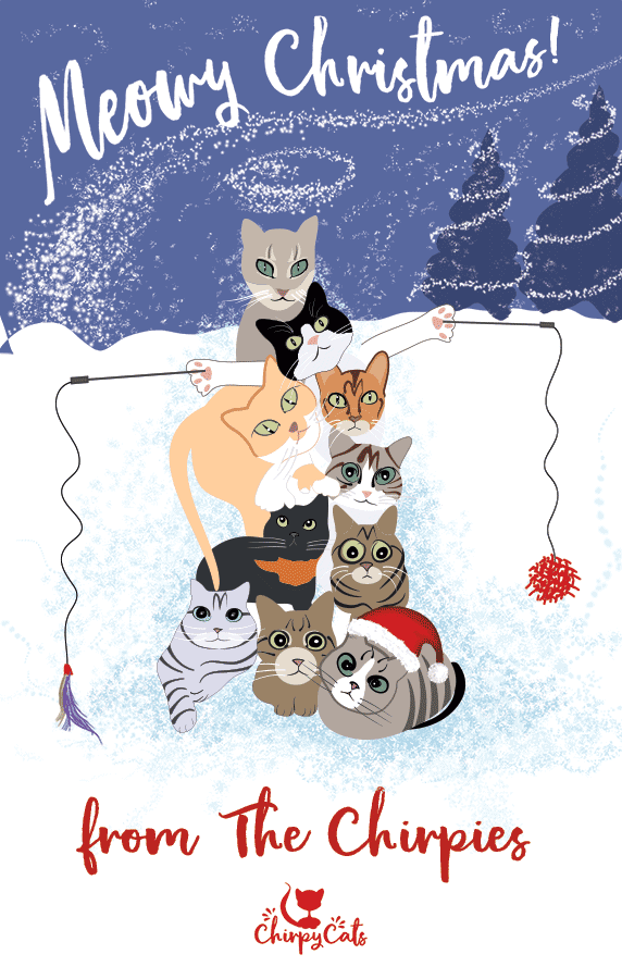 Happy Holidays from All the Chirpies!