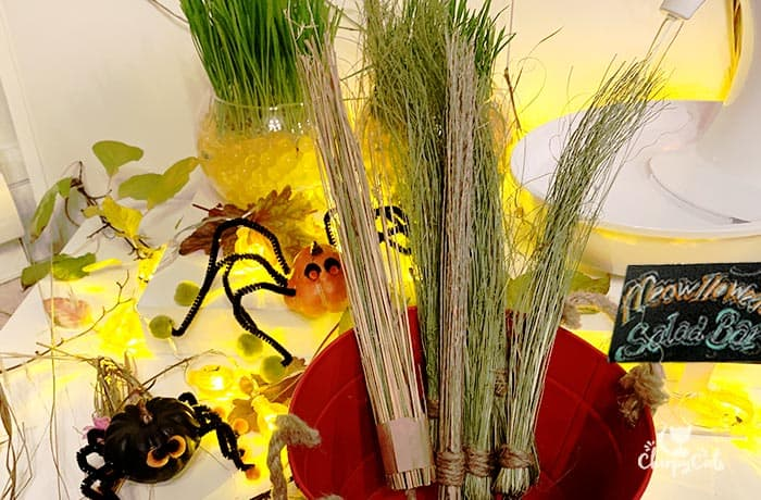 Mini witches brooms in a meowlloween display for cats