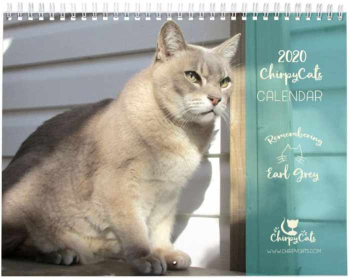 Remembering Earl Grey 2020 Calendar and giving back to Community Cats
