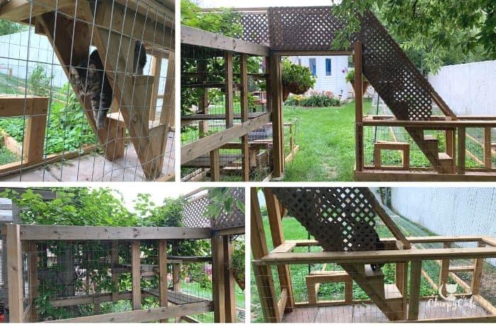 collage of back elevation of cat bridge