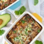 overhead shot of chicken mole enchiladas in baking dish