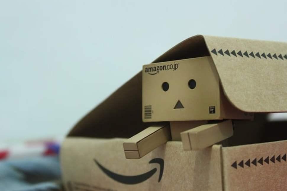 アマゾンの箱から出てくるダンボー