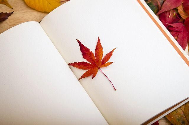 本の中の紅葉のしおり