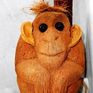 Studio Monkeys