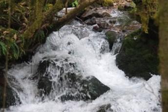 walk2 chupani river1 jc