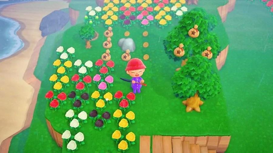 Animal Crossing Ding 0606 6