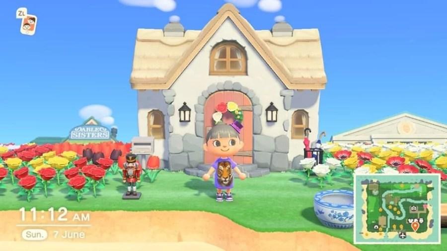 Animal Crossing Ding 0806 5