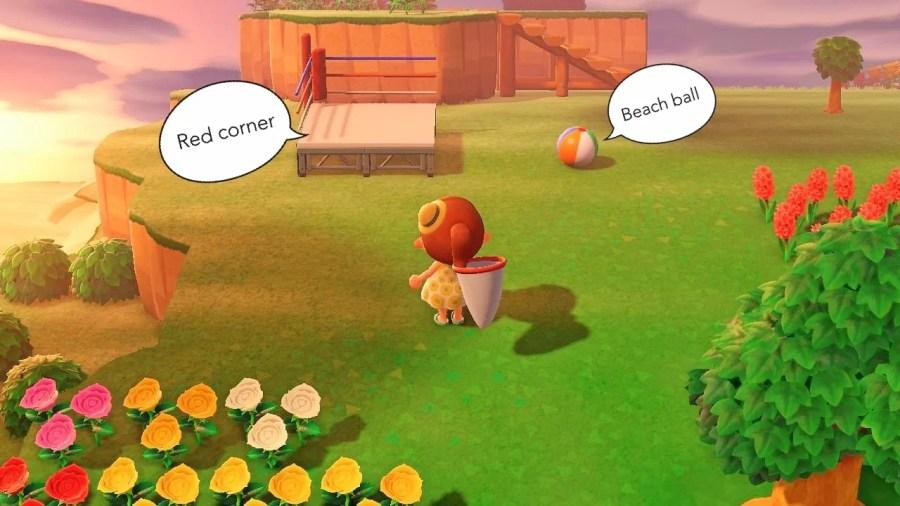 Animal Crossing Ding 2606 5