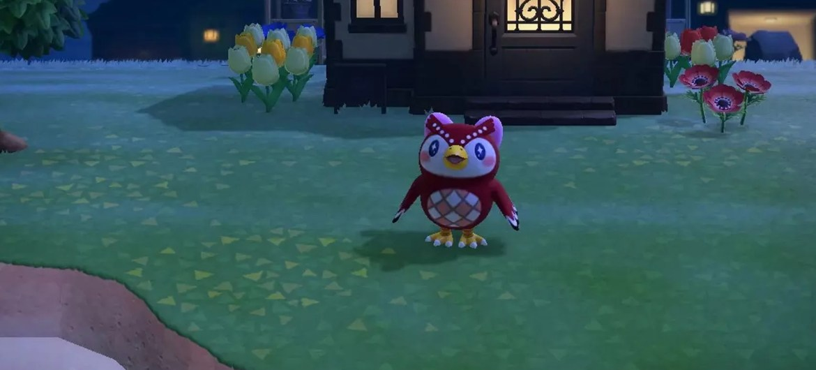 Shooting Star Animal Crossing
