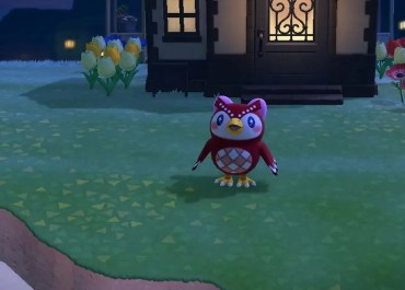 Shooting Star Animal Crossing