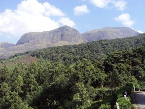 Anamudi_from_Munnar_Gundumalai_road