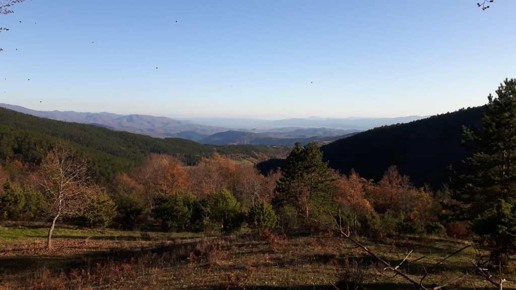 Trail 2 - Monte Fatucchio - Chiusi Verna Bike