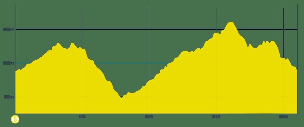 Trail 5 Monte Calvano - altimetria - chiusi verna bike