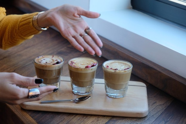 Latte samples from Pilot Project.