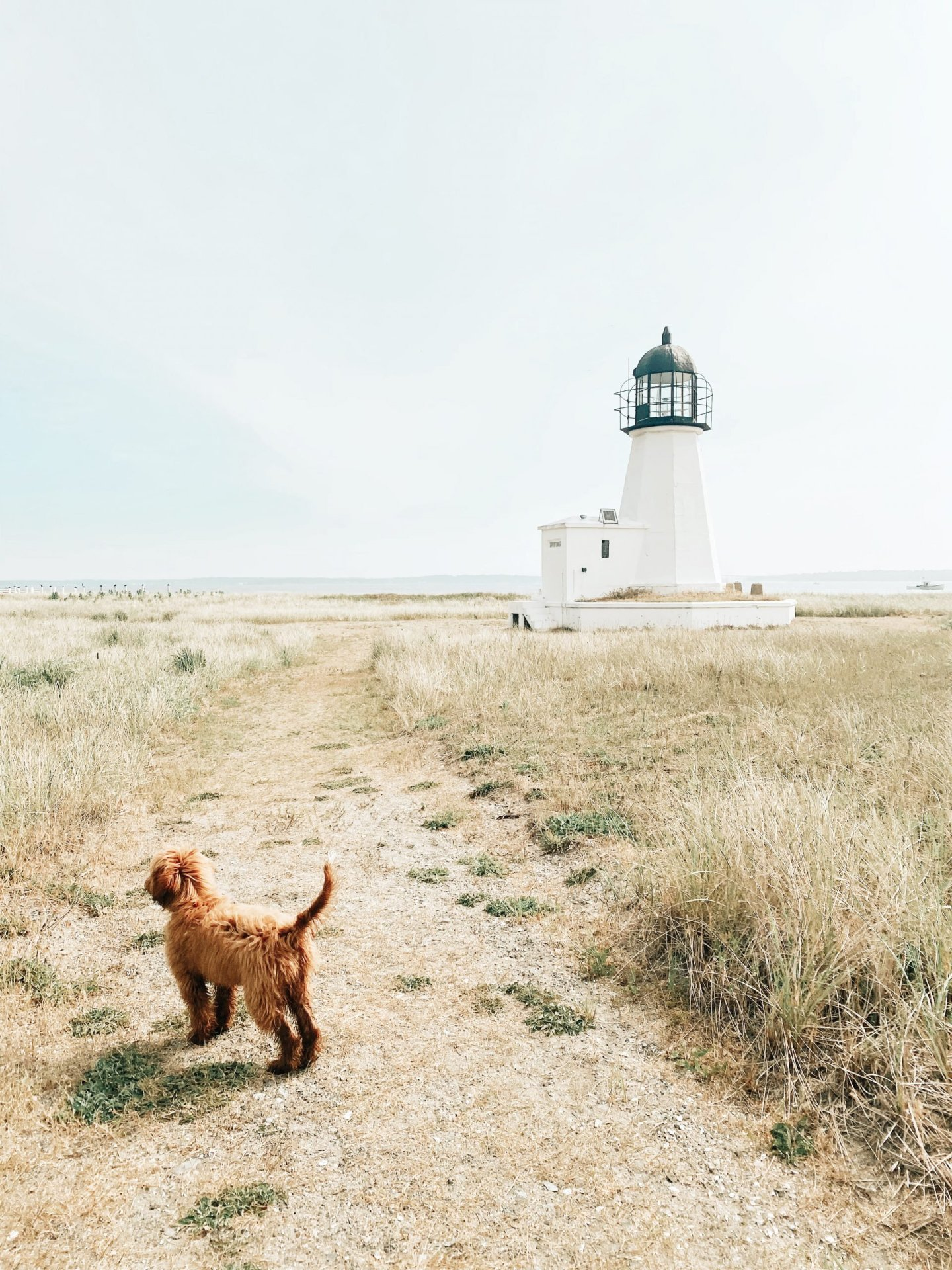 Prudence Island, Rhode Island: Complete Travel Guide