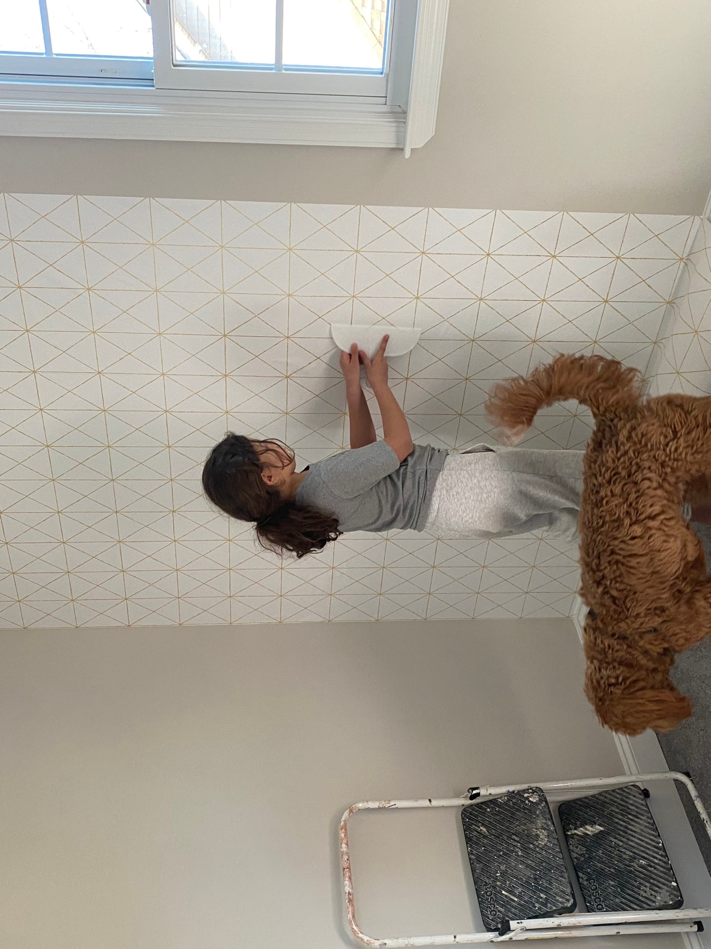 Chocolate and Lace shares tips for peel and stick wallpaper.