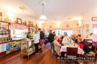 Inside The Tearooms, Chocolate Drops, Yanchep - © MADCAT Photography 2014