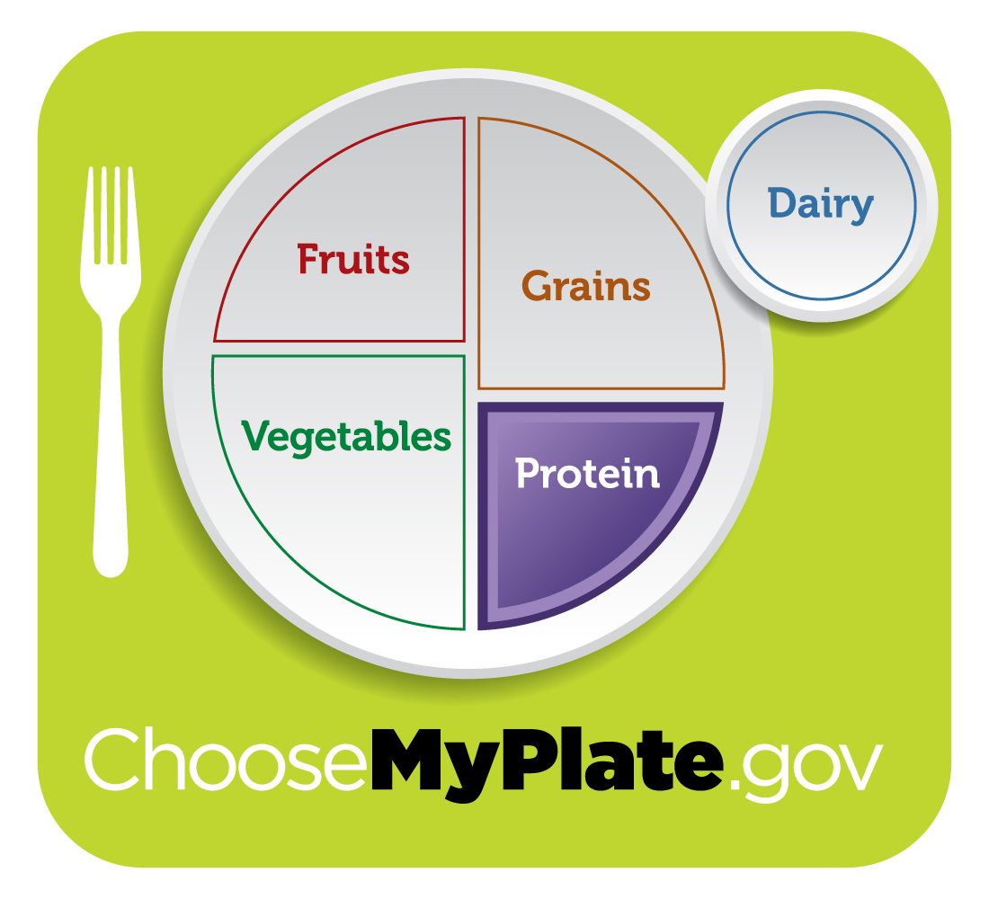 my plate protein