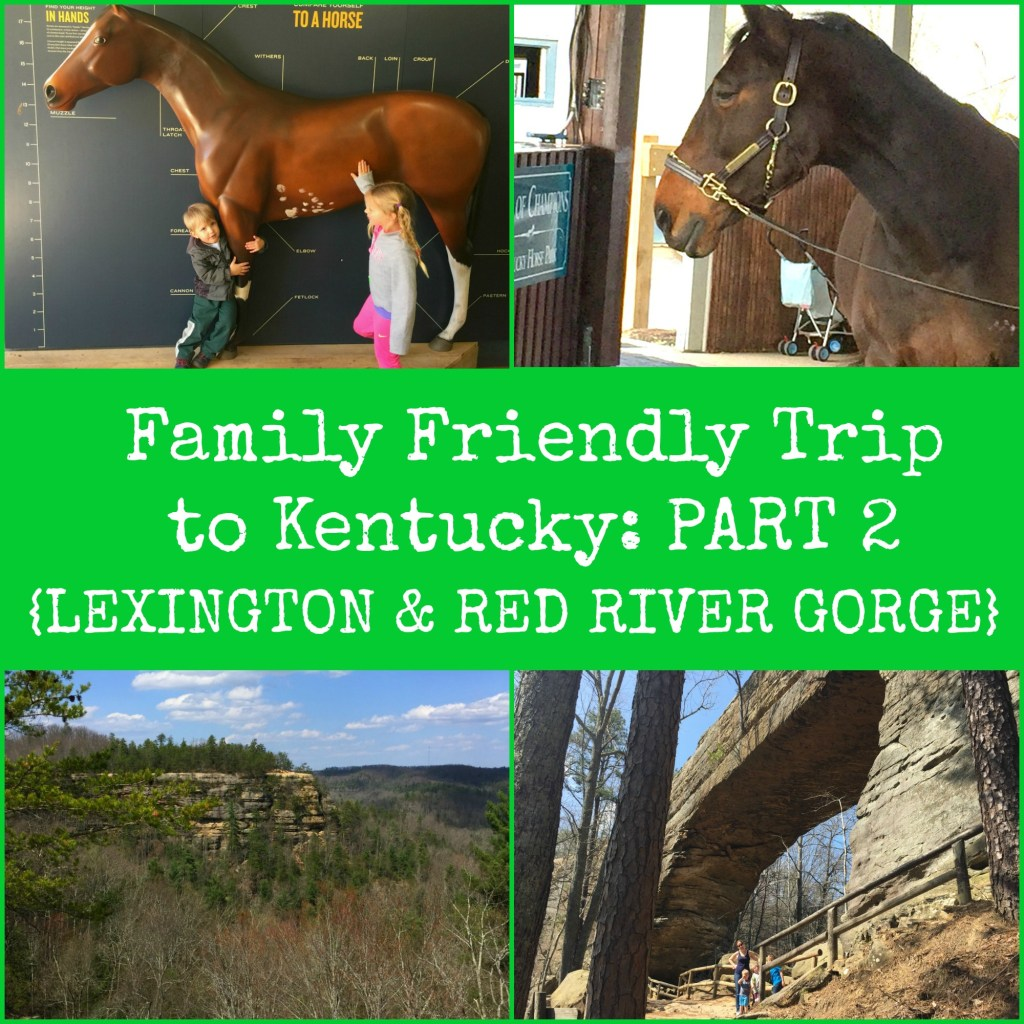 Family Friendly Trip to Kentucky: Part 2 {Lexington & Red River Gorge}