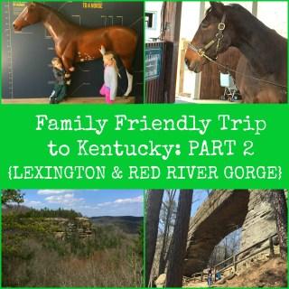 PART 2 LEXINGTON KENTUCKY