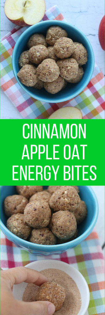 cinnamon.apple.oat.energy.bites