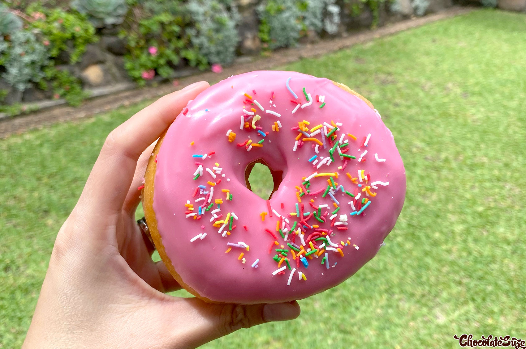 Homer Simpson donut at L.A Donuts, Beverly Hills