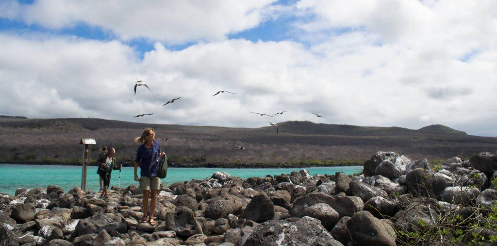 Enjoy the Isla Lobos Tour from San Cristobal Island (Galapagos)