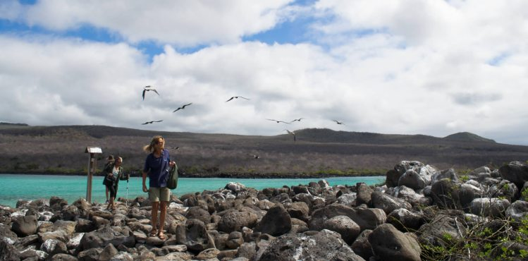 Enjoy the Isla Lobos Tour from San Cristobal Island (Galapagos)
