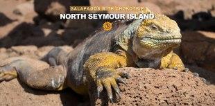 North Seymour Galapagos