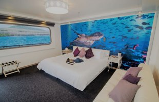 Cabin with matrimonial bed on Camila Yacht