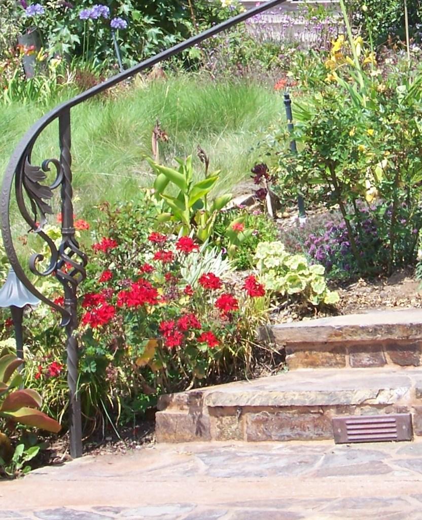 backyard-landscape-design-xeriscape-san-diego